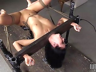 hd videos hardcore bdsm